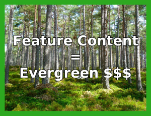 Online Feature Content Matters Greatly
