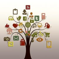 Website Content Quantity Drives Product Audience
