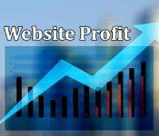 Business Structure Impacts Website Profit