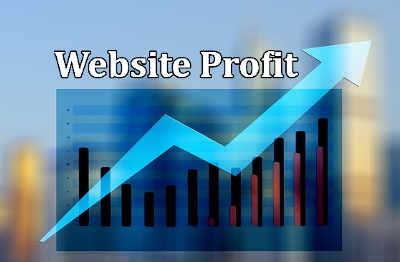 Website profit